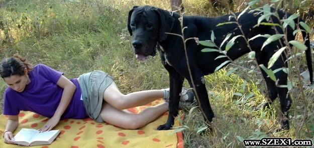 A lány és a kutya szexuális viszony létesítenek