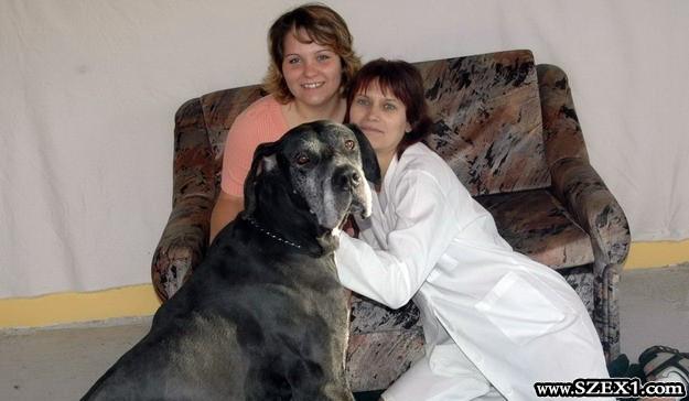 Kutyával szexel a két nő